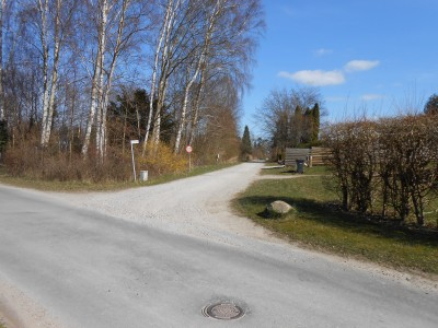 Nicolaisensvej set mod fjorden.